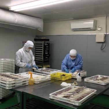 食品製造工場